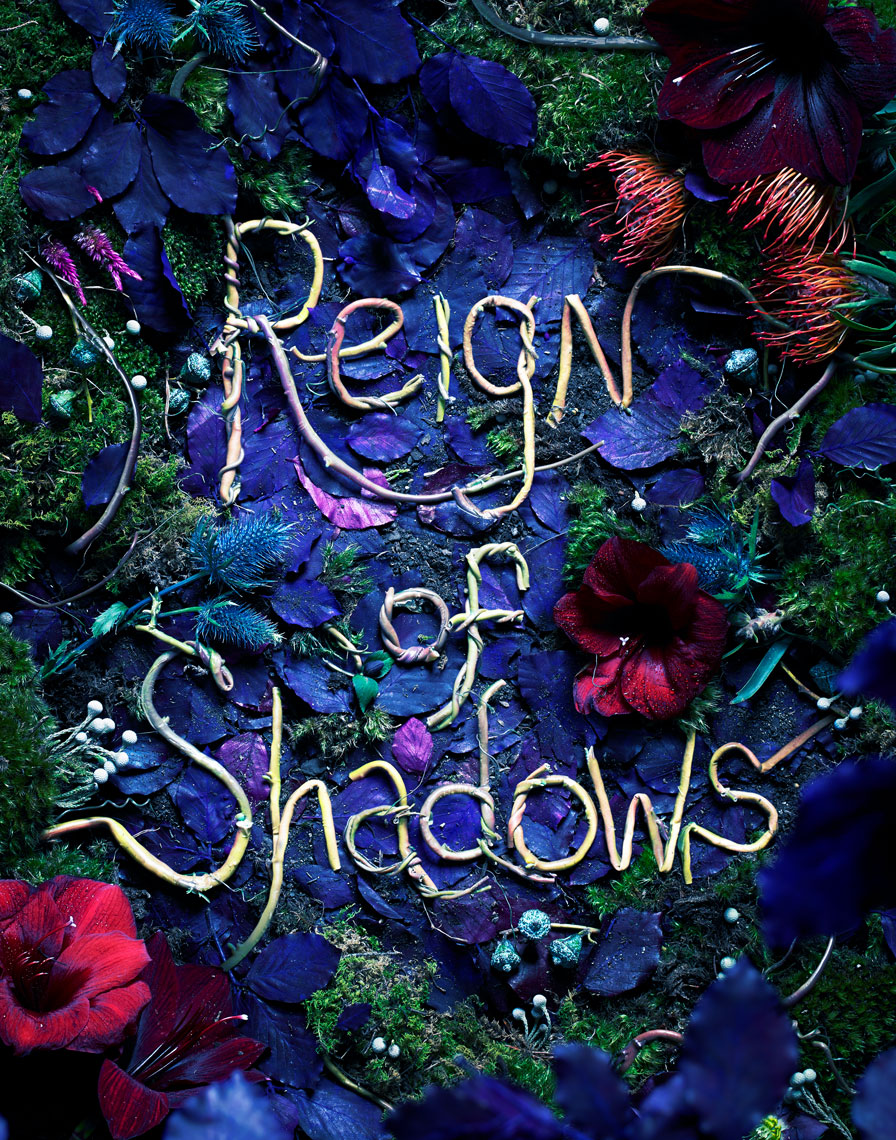 Harper-Reign-of-Shadows-more-vines